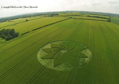 Hoden nr Evesham, Worcestershire | 13th July 2013 | Barley L