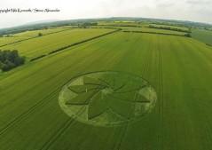 Hoden nr Evesham, Worcestershire | 13th July 2013 | Barley L