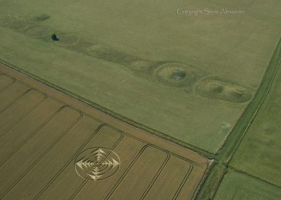 Normanton Down nr Stonehenge, Wiltshire | 1st August 2013 | Wheat L