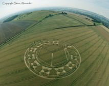 Monument Hill Etchilhampton, Wiltshire | 6th August 2013 | Wheat FE