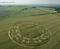 Monument Hill Etchilhampton, Wiltshire | 6th August 2013 | Wheat L