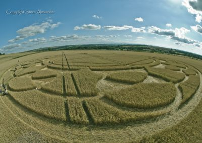 Monument Hill Etchilhampton, Wiltshire | 6th August 2013 | Wheat P2