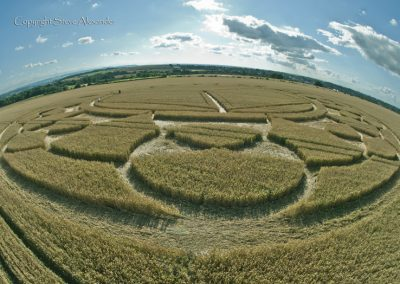 Monument Hill Etchilhampton, Wiltshire | 6th August 2013 | Wheat P3