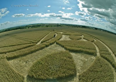 Monument Hill Etchilhampton, Wiltshire | 6th August 2013 | Wheat P9