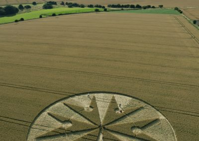 Chute Causeway nr Tidcombe, Wiltshire | 10th August 2013 | Wheat L