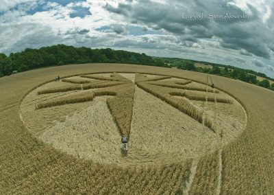 Chute Causeway nr Tidcombe, Wiltshire | 10th August 2013 | Wheat P