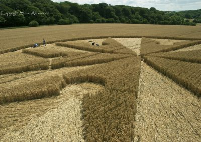 Chute Causeway nr Tidcombe, Wiltshire | 10th August 2013 | Wheat P5