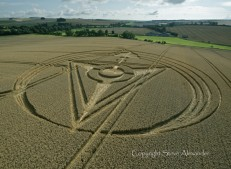 West Kennett Longbarrow, Wiltshire | 13th August 2013 | Wheat L