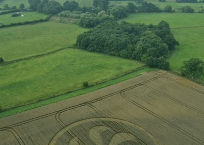 Marden Henge, Wiltshire | 23rd August 2013 | Wheat L