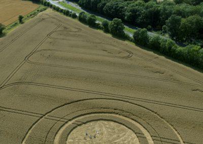 Trodds Copse, nr Tichborne, Hampshire | 4th August 2014 | Wheat | L2
