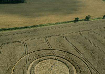 Trodds Copse, nr Tichborne, Hampshire | 4th August 2014 | Wheat | L3