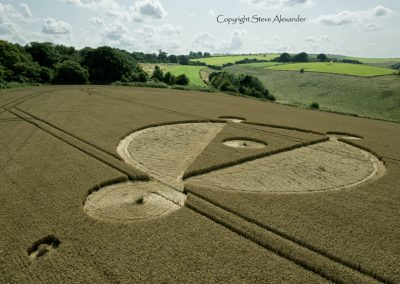 Cow Down, nr East Kennet, Wiltshire | 5th August 2014 | Wheat | LOW2