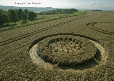 The Ridgeway, nr Hackpen Hill, Wiltshire | 6th August 2014 | Wheat | L