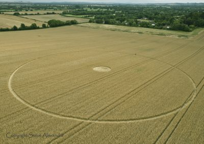 Mixon, nr Etchilhampton, Wiltshire | 12th August 2014 | Wheat | L