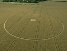 Mixon, nr Etchilhampton, Wiltshire | 12th August 2014 | Wheat | L2