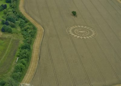 Nettle Hill, nr Ansty, Warwickshire | 16th August 2014 | Wheat L4