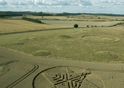 Ackling Dyke (2), nr Sixpenny Hadley, Dorset | 22nd August 2014 | Wheat L3