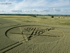 Ackling Dyke (2), nr Sixpenny Hadley, Dorset | 22nd August 2014 | Wheat LOW