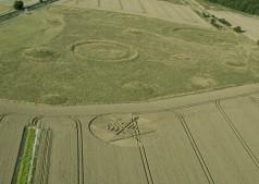 Ackling Dyke (2), nr Sixpenny Hadley, Dorset | 22nd August 2014 | Wheat L4