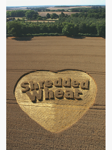 Shredded Wheat Breakfast cereal campaign