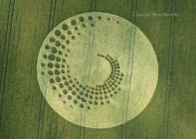Forest Hill nr Marlborough, Wiltshire   16th July 2014   Wheat   OH