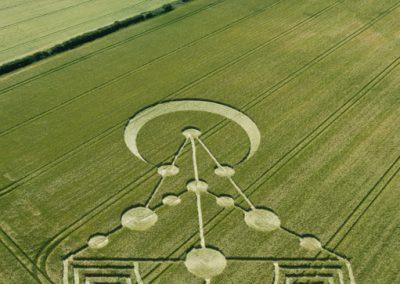 Badbury Rings, nr Wimborne Minster, Dorset   17th June 2014   Barley   L