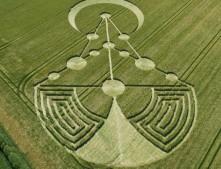 Badbury Rings, nr Wimborne Minster, Dorset | 17th June 2014 | Barley | L