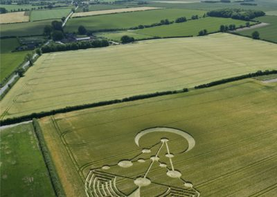 Badbury Rings, nr Wimborne Minster, Dorset   17th June 2014   Barley   L7