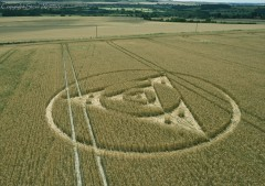 Etchilhampton Hill, Wiltshire | 27th July 2014 | Wheat | LOW