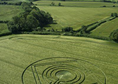 Hod Hill, Hanford, Dorset | 1st June 2014 | Barley | L2