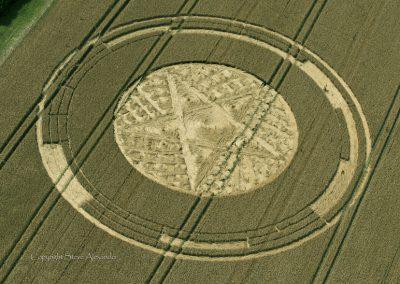Parkes Hill Plantation, nr Cherington, Gloucestershire | 27th July 2014 | Wheat | OH2