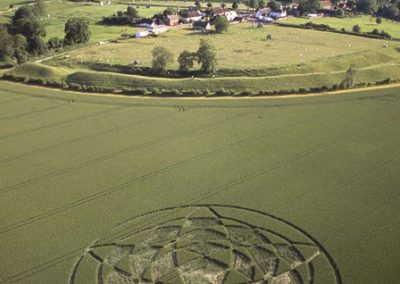 Avebury Henge, Wiltshire | 22nd June 2002 | Wheat  L  MFA3