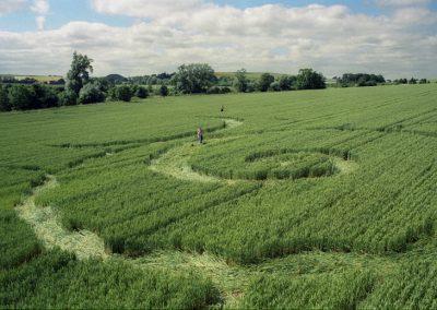 East Kennett, Avebury, Wiltshire   13th July 1996   Wheat P 35mm Neg Scan