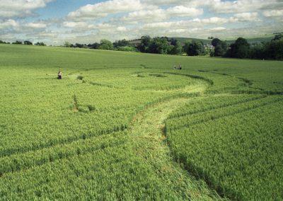 East Kennett, Avebury, Wiltshire   13th July 1996   Wheat P2 35mm Neg Scan