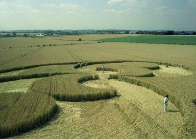 Liddington Castle, Wiltshire   2nd August 1996   Wheat P4 35mm Neg Scan