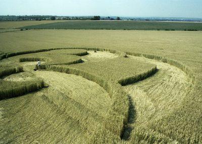 Liddington Castle, Wiltshire   2nd August 1996   Wheat P3 35mm Neg Scan