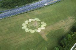 Litchfield, Hampshire | 6th July 1995 | Wheat | L 35mm Neg Scan