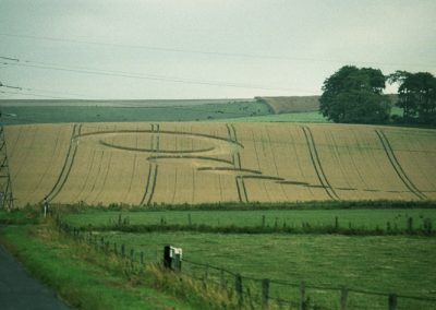 Wilsford, Wiltshire |15th July 1994 | Wheat RS 35mm Neg Scan