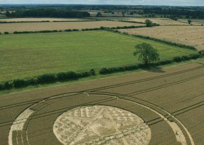 Parkes Hill Plantation, nr Cherington, Gloucestershire | 27th July 2014 | Wheat | L