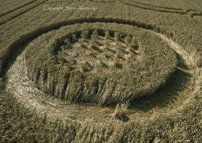 The Ridgeway, nr Hackpen Hill, Wiltshire | 6th August 2014 | Wheat | LOW