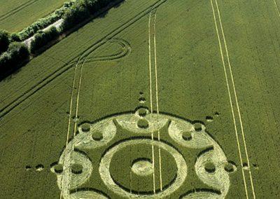 Lane End Down, Hampshire   22nd July 2001   Wheat  L 35mm