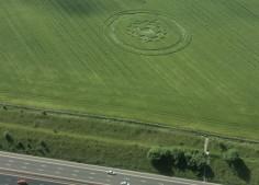 Berwick Bassett, Wiltshire   9th June 2001   Barley L 35mm