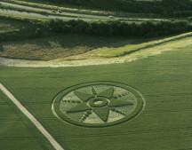 Chilcomb Down, Hampshire | 15th July 2001 | Wheat L 35mm