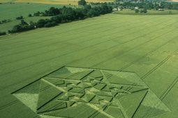 Green Street Avebury, Wiltshire | 6th July 2003 | Wheat L3 35mm