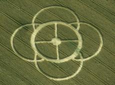Martock, Somerset   3rd July 1998   Wheat 35mm