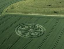 Milk Hill, Wiltshire   12th July 2001   Wheat L2 35mm