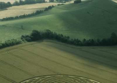 Picked Hill, Wiltshire | 13th August 2000 | Wheat L 35mm