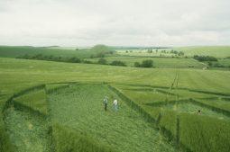 Silbury Hill, Wiltshire   12th June 2000   Barley P3 35mm