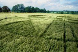 Winterbourne Bassett, Wiltshire | 1st June 1997 | Barley P 35mm