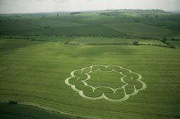 Windmill Hill, Wiltshire | 6th June 2003 | Wheat L2 35mm